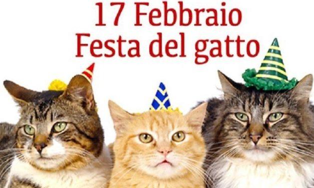 17 FEBBRAIO: FESTA NAZIONALE DEL GATTO